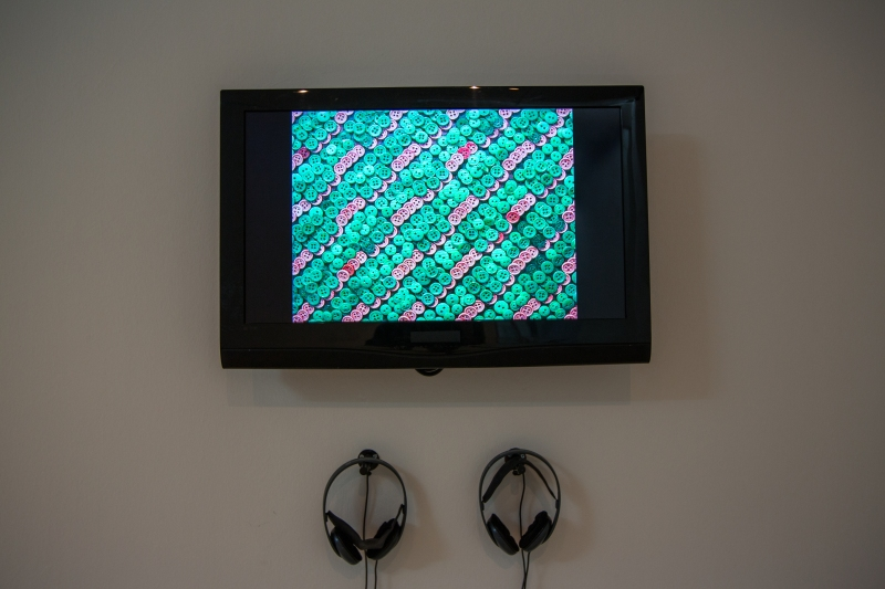 Tromarama, Zsa Zsa Zsu (installation view), 2007. Image courtesy of Singapore Art Museum (2)